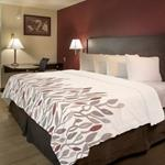 Red Roof Inn King Enchanted Leaves Coverlet w/ Cut Corners