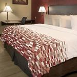 Red Roof Inn Queen Twilight Mosaic Coverlet w/ Cut Corners